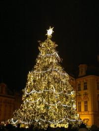 Goldener Weihnachtsbaum auf dem Altstädter Ring, Prag 2013
